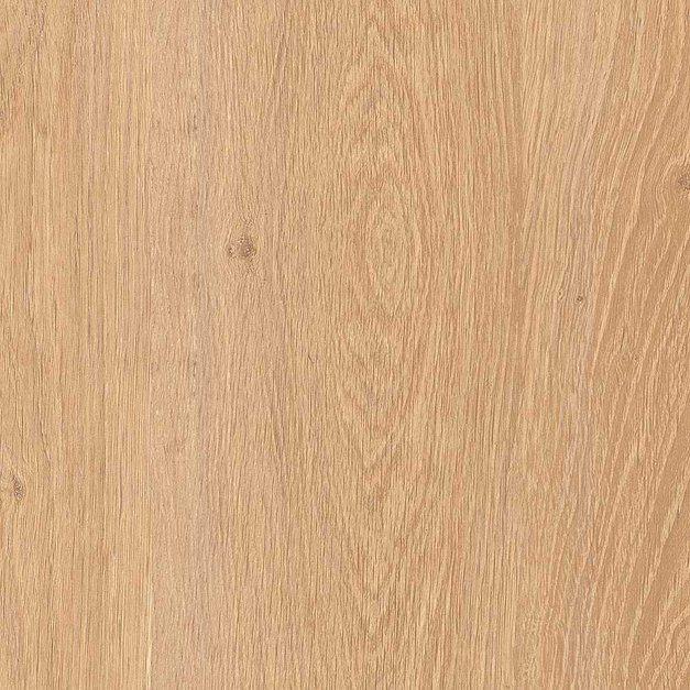 Ламинат Kastamonu Дуб Алжирский кремовый FP041