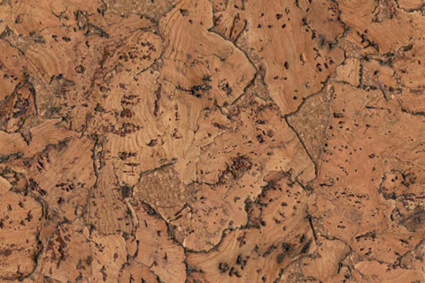 Пробковое покрытие CorkStyle Monte Nat